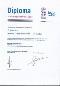 Diploma KNSB Praktijkbegeleider